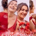 CINE CLUB - LA BODA DE ROSA
